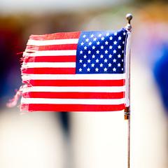 American Flag, Moon Landing 1969